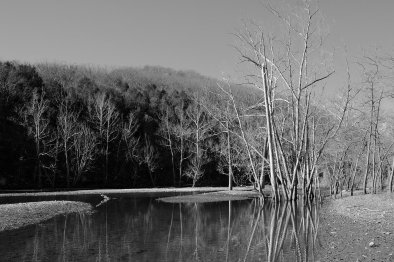 Table Rock Lake Entrance to Piney Creek. Copyright © 2011 Gary Allman, all rights reserved.