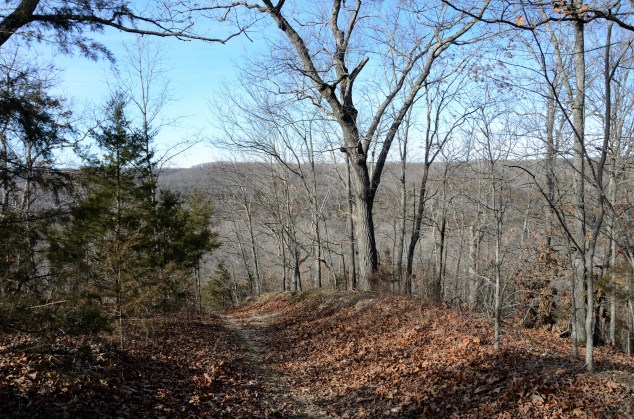 Hiking the Silver Trail - Busiek State Forest and Wildlife Area