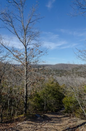 Silver Trail at Busiek - View from near the top (looking north)