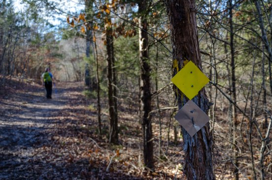 Yellow & Silver Trail Markers at Busiek