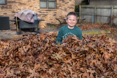 Thanksgiving 2016 - Leaf Fort