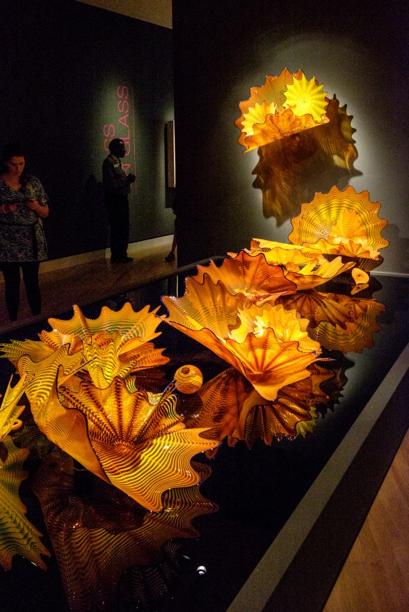 Photograph of Calendula Persians. Artist: Dale Chihuly. Chihuly in the Forest. Crystal Bridges Museum of American Art.