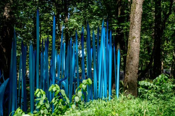 Photograph of Turquoise Reeds. Artist: Dale Chihuly. Chihuly in the Forest. Crystal Bridges Museum of American Art.