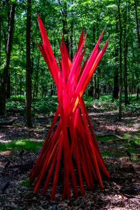 Photograph of Red Reeds. Artist: Dale Chihuly. Chihuly in the Forest. Crystal Bridges Museum of American Art.