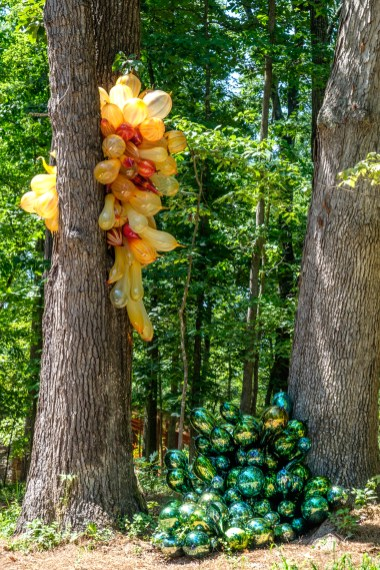 Photograph of Squero Di San Trovaso Chandelier & Campiello Barbaro Chandelier. Artist: Dale Chihuly. Chihuly in the Forest. Crystal Bridges Museum of American Art.