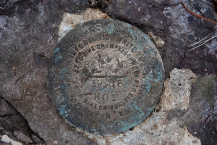 At the summit of Bell Mountain in Iron County, Missouri, we found this survey marker. It was hard to read. I think someone took the warning about defacing it as a challenge. Copyright © 2012 Ginger Allman - www.ozarkswalkabout.com