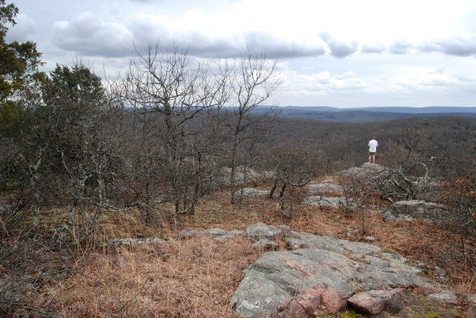 Near the summit of Bell Mountain in Iron County, Missouri, Gary looks over the valley which holds Shut-In Creek. Copyright © 2012 Ginger Allman - www.ozarkswalkabout.com
