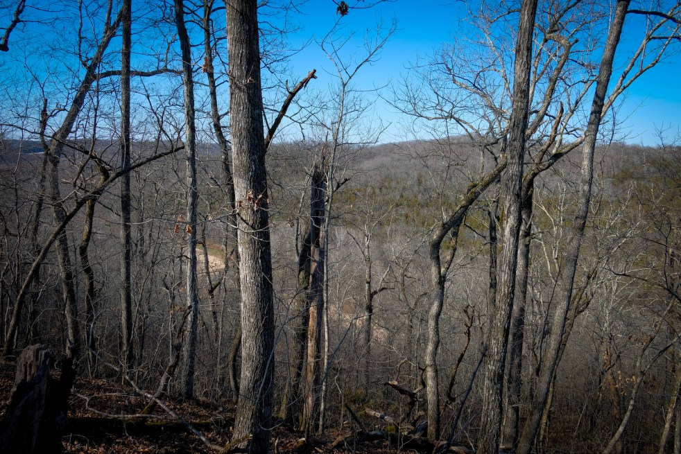Overlooking Woods Fork - color. Copyright © 2018 Gary Allman, all rights reserved.