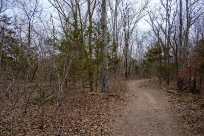 Hiking along the ridge near the Carter Family Cemetery.