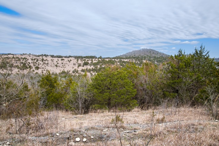 Brushy Creek is on the other side of that ridge. Copyright © 2018 Gary Allman, all rights reserved.