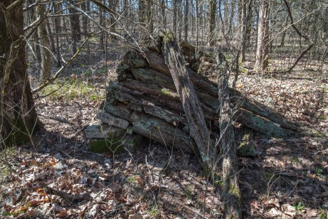 Remains of an old log cabin.