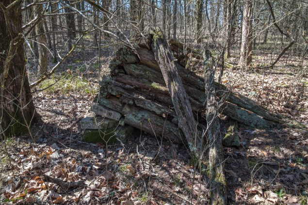 Remains of an old log cabin. Copyright © 2018 Gary Allman, all rights reserved.