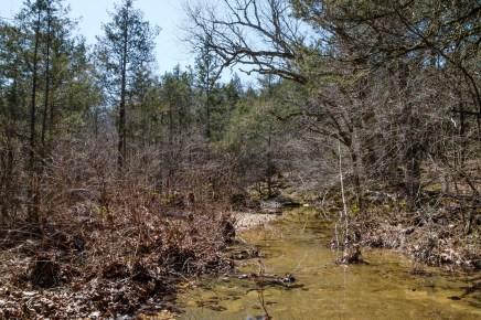 Brushy Creek (Looking south).