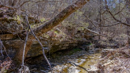 Spring box in Brushy Creek. Copyright © 2018 Gary Allman, all rights reserved.
