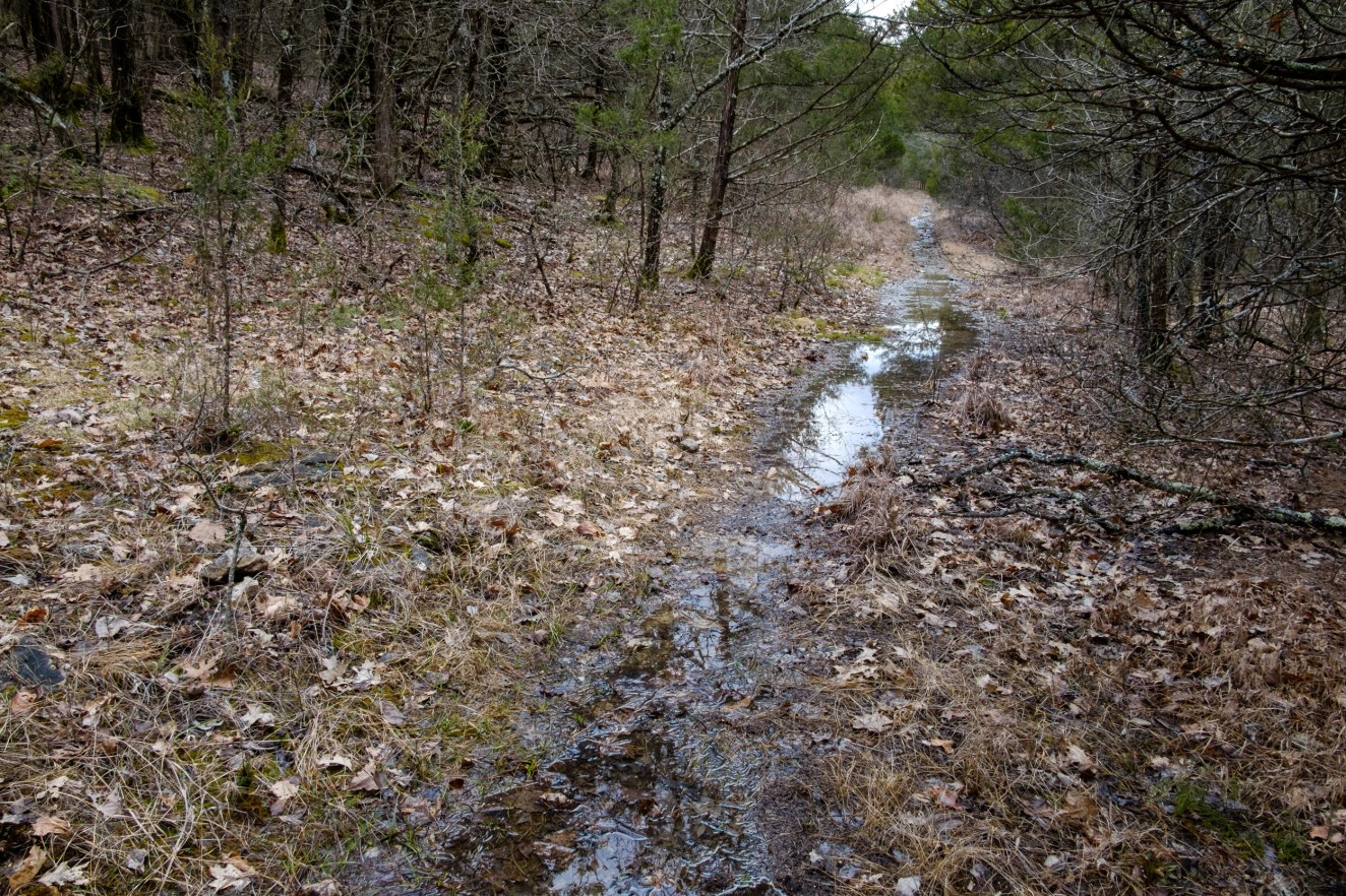 The trail was more like a small creek. Copyright © 2019 Gary Allman, all rights reserved.