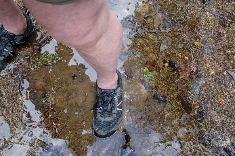 Testing My Hiking Shoes -- Xero TerraFlex hiking shoes -- in some very wet conditions. I didn't call this 'My wet feet hike' for nothing! Copyright © 2019 Gary Allman, all rights reserved.