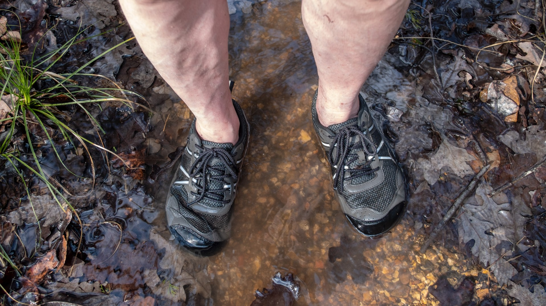 Testing My Hiking Shoes -- Xero TerraFlex hiking shoes -- in some very wet conditions. I didn't call this 'My wet feet trip' for nothing! Copyright © 2019 Gary Allman, all rights reserved.