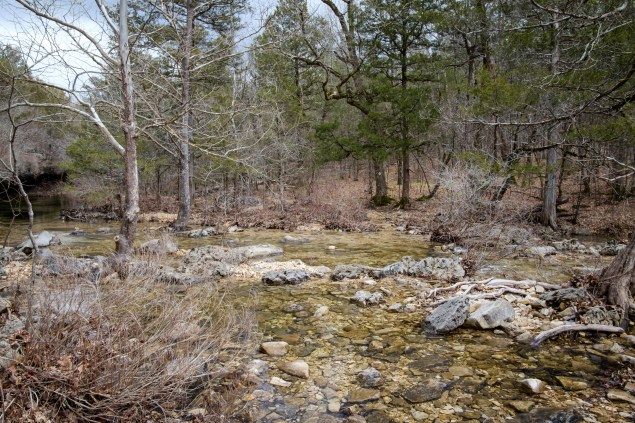 Creek Crossing #4 - Long Creek - I missed out crossing #3 which was just a hop across some unnamed feeder branch. One of my favorite camping sites is up on the bluffs to the left. Copyright © 2019 Gary Allman, all rights reserved.