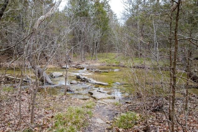 Creek Crossing #7 - Long Creek. Copyright © 2019 Gary Allman, all rights reserved.
