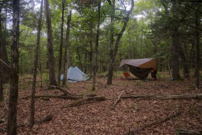 Camped on 'Ant Hill' - So named (by us) because of the huge numbers of carpenter ants here. We couldn't decide if the ants killed the trees, or they moved in because the trees died. Copyright © 2021 Gary Allman, all rights reserved.