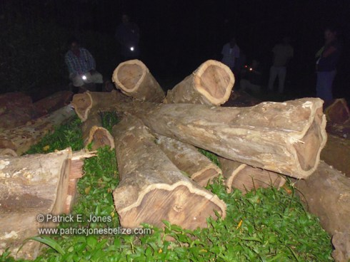 Illegal Rosewood confiscated (Toledo)