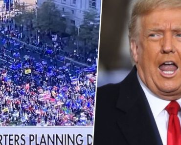 Trump's Team Mocked After 'Lying About Size of Million MAGA March'