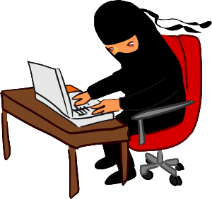 The Customer Service Ninja...  Whose superpower is solving customer problems before they happen...