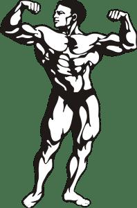 bodybuilder-146791_960_720