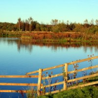 Branton Lakes nature conservation area