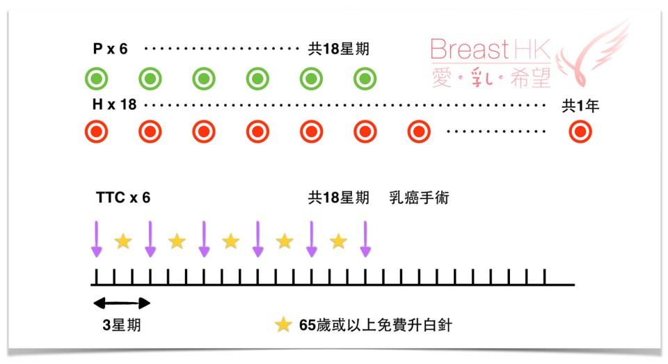 乳癌雙標靶