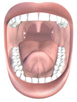 white spots on tonsils - What are Tonsil Stones?