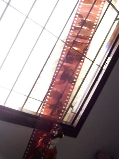 Filmes revelados, uhuul (Foto: Lara Paiva/Arquivo)