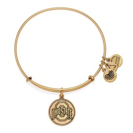 University Logo Charm Bangle. This site has a bangle for every major college and NFL team.