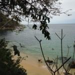 Puerto Vallarta Trip