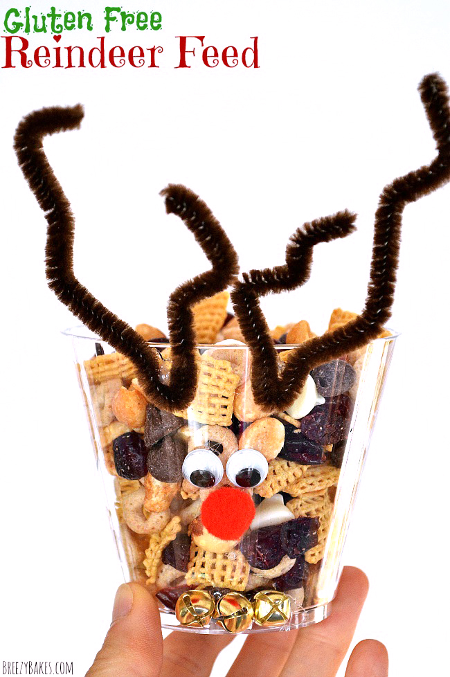 A super simple and super fun holiday mix with this Gluten Free Reindeer Feed. Can it be any more exciting than to eat out of Rudolf's head???