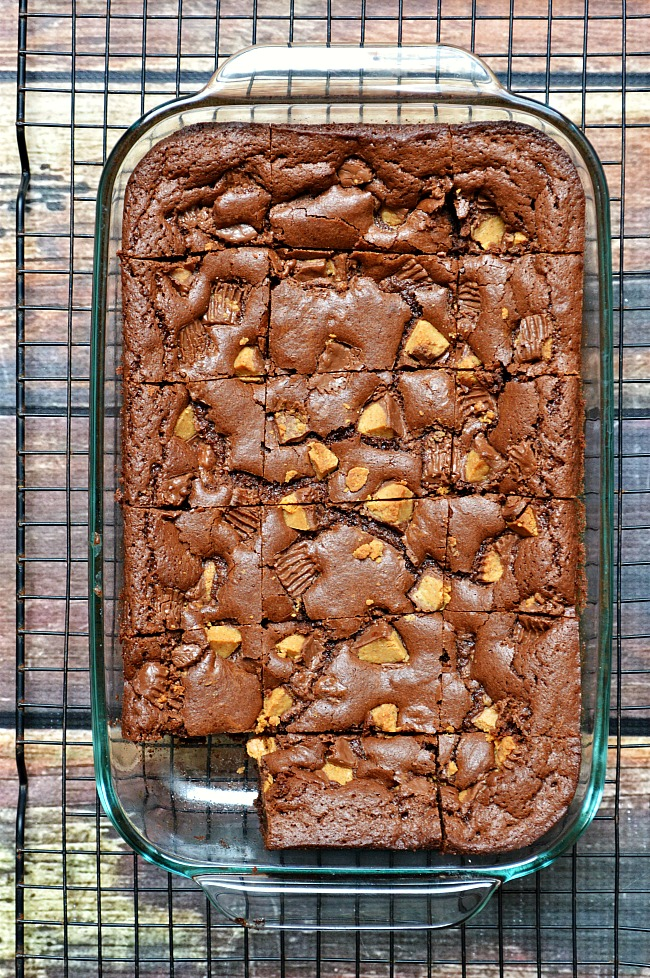 Calling all brownie lovers! Calling all peanut butter lovers!!! Heck, calling anyone and everyone that ever knew anything delicious to come and try these Gluten Free Reese's Peanut Butter Cup Brownies! Fudgy, peanut buttery, chocolaty gluten free goodness.