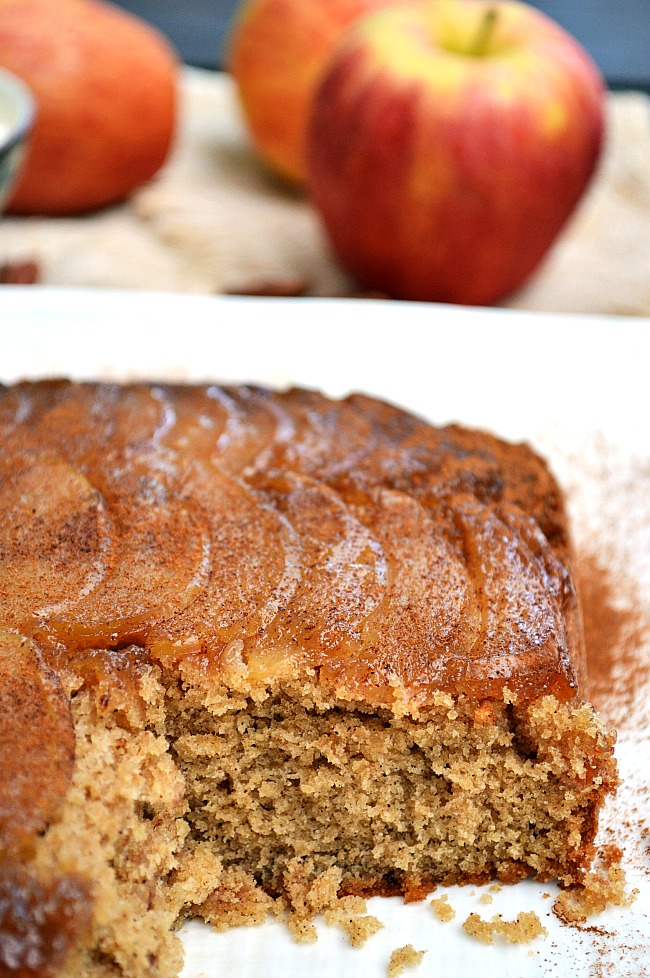 Scootch over pumpkin and make way for this fabulous Fall/Winter dessert! This perfectly sweet Gluten Free Upside Down Apple Spice Cake will be on your holiday menu.