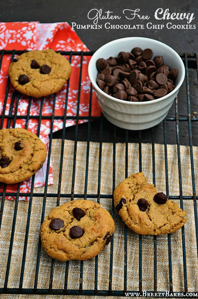 If you need a little fall reboot before diving all into Thanksgiving, give these perfectly fall-flavored Gluten Free Chewy Pumpkin Chocolate Chip Cookies a try. Your family is sure to feel the love with this easy to share recipe.
