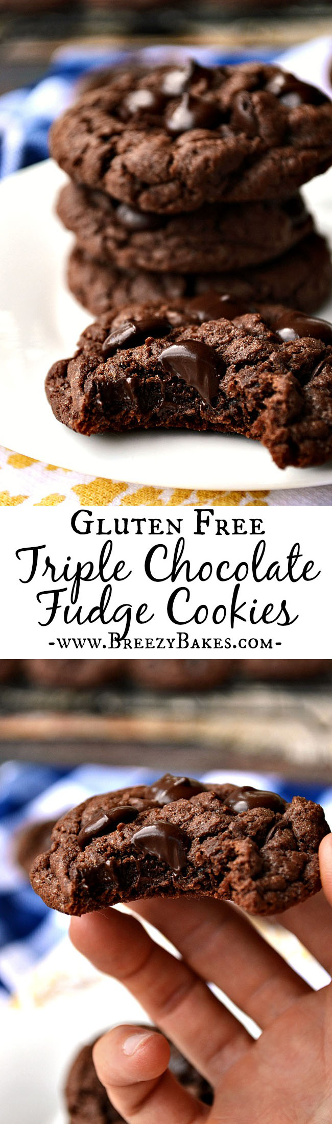 There is no such thing as chocolate overload when it comes to these Gluten Free Triple Chocolate Fudge Cookies! Dark chocolate chips, chocolate pudding, and cocoa powder make these a chocoholics dream come true.