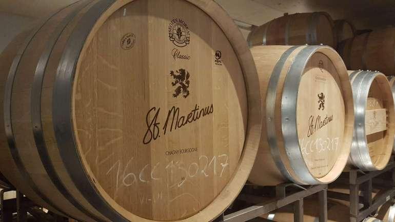 rondleiding wijngaard sint martinus vijlen bregblogt.nl