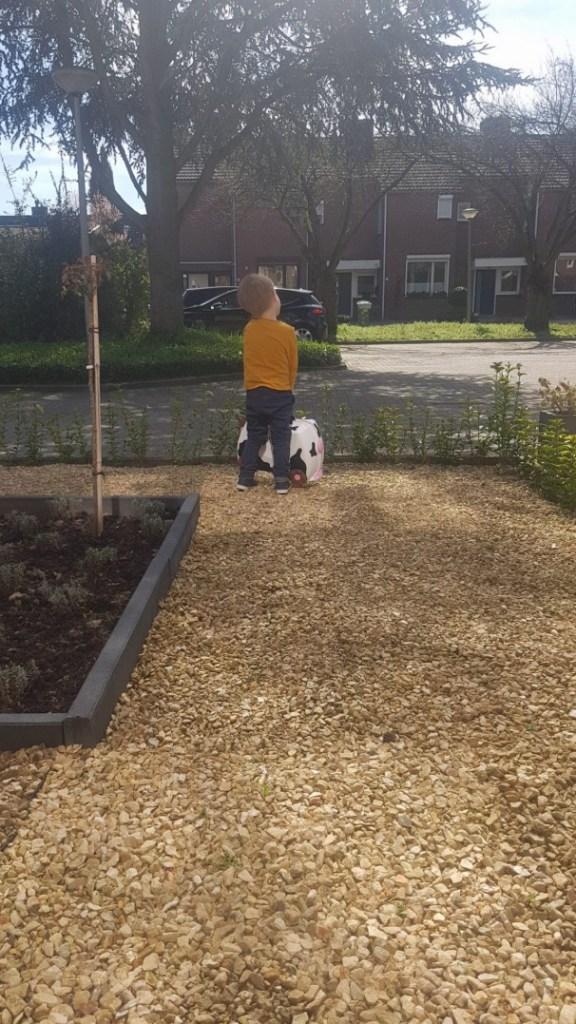 wachten op opa en oma in de zon bregblogt.nl