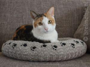 Patroon kattenmand breien