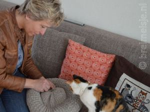 Breipatroon Kattenmand Een Succes Breimeisjenl