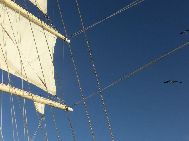 Tag 6 der Kreuzfahrt mit der Star Clipper durch die Karibik _ 14