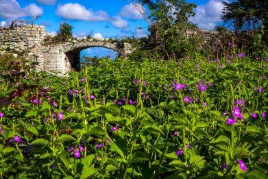 Urlaub auf Antigua - Martin Cyris-7