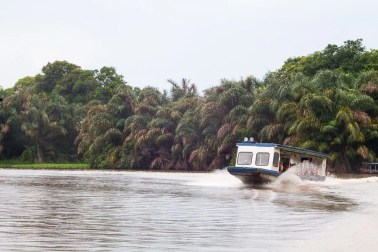 Costa Rica - Tortuguero Nationalpark - Boottransport