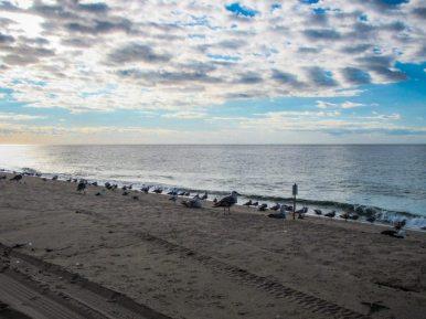 Reisebericht Boston - Joerg Pasemann - Reiseberichte - Cape Cod -0698