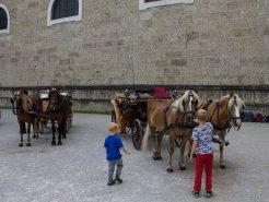 Pferdekutschen warten auf Gäste in Salzburg - Familienurlaub Österreich