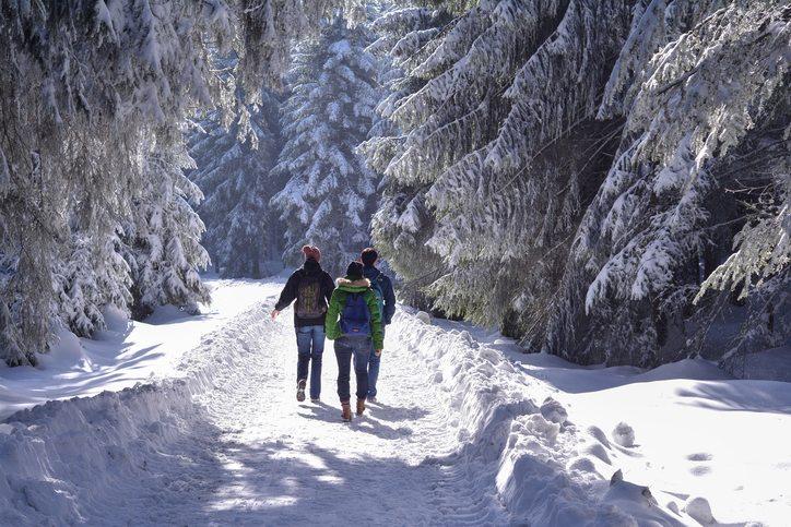 Winterwanderungen im Schwarzwald