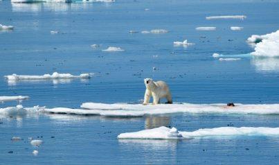 Abenteuer-Arktis-Elisabeth-Konstantinidis-Reiseblog-Breitengrad53-SC_0952